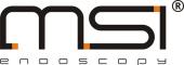 Logo_msi_03